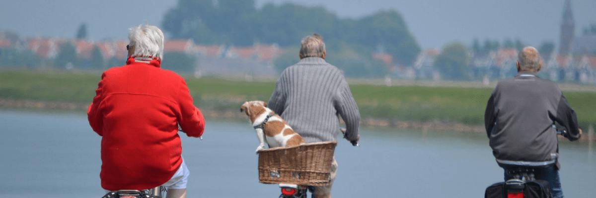 older workforce