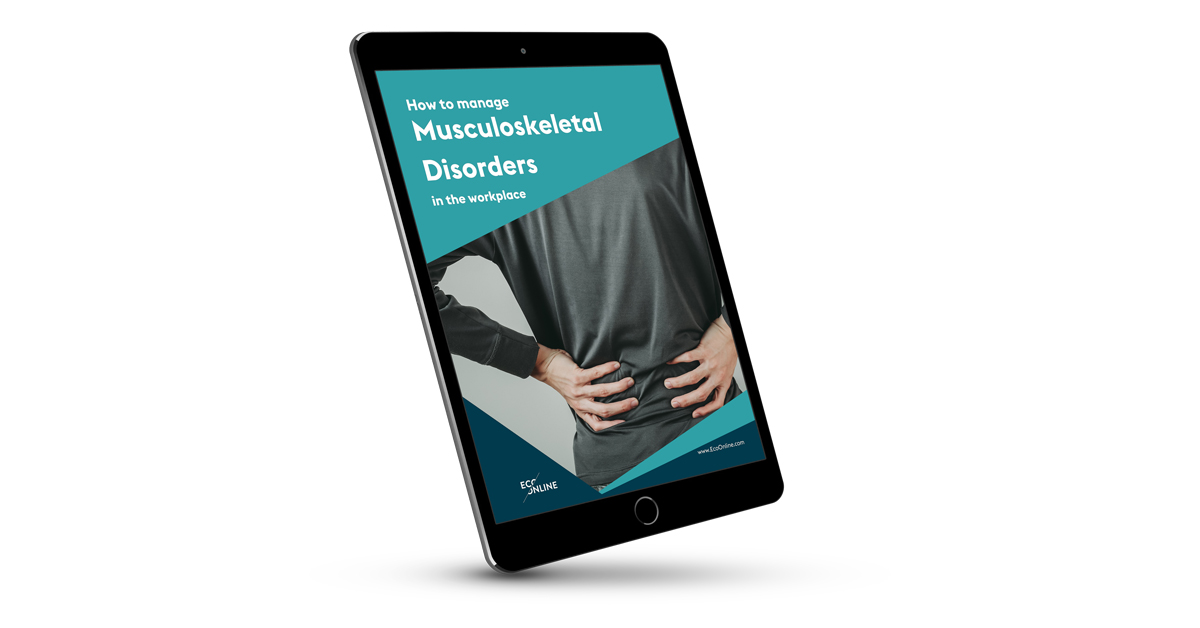 Tablet screen with mock up of MSD brochure cover